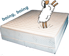 Sheep Jumping on Latex Mattress