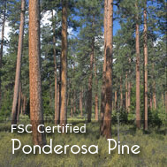 It all starts with a good foundation... made with sustainably harvested pine for the Organic and Natural bed of choice.