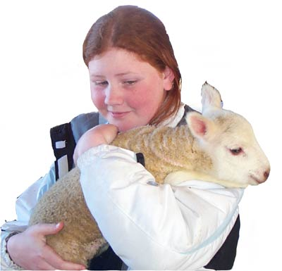 Bryna holds a lamb